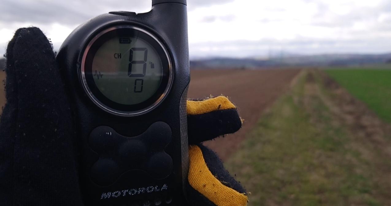 Motorola T6